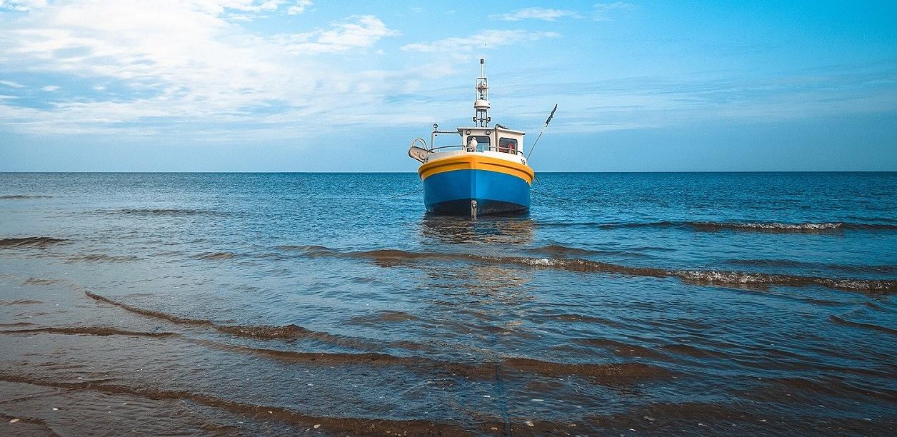 La pesca sostenible multiplicaría por seis la producción de alimentos marinos.