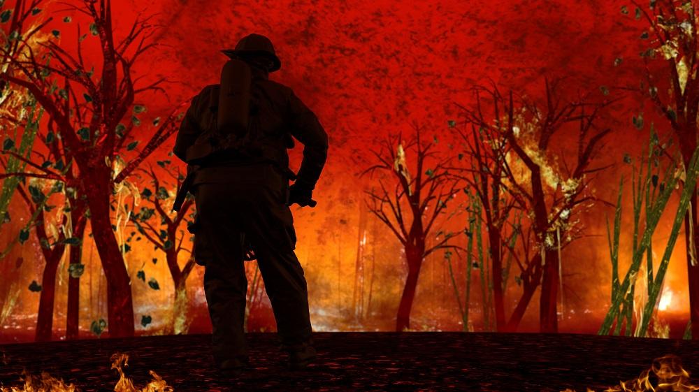 Los incendios en la Amazonia o en Australia fueron devastadores en 2019.
