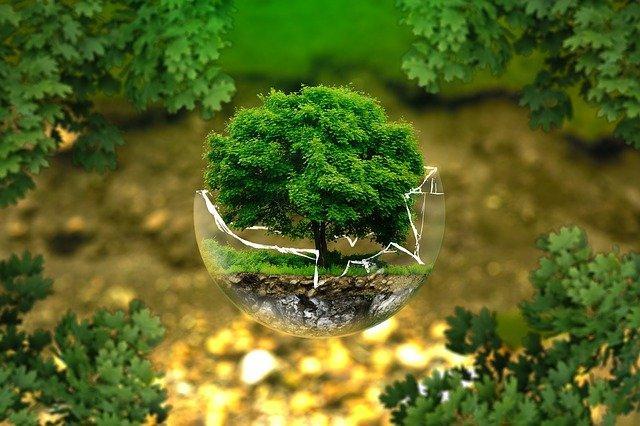 Proteger el entorno es asegurar el futuro