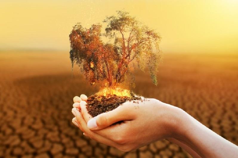 El cuidado del planeta, una prioridad insoslayable para la supervivencia humana.