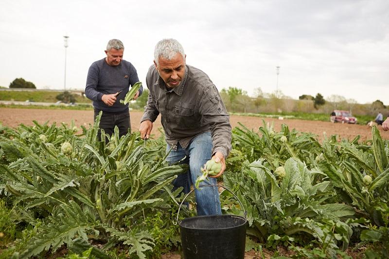 """Fundación """"la Caixa"""" ayuda a la población rural a superar los efectos de la Covid-19."""