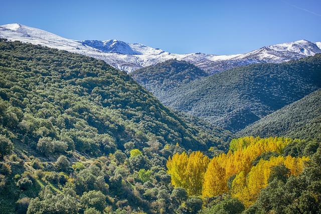 Los parques naturales atesoran un alto interés paisajístico y un elevado valor en su flora y su fauna
