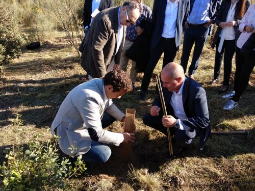 El alcalde de las Rozas, José de la Uz, y el presidente de LG, Jaime de Jaraiz, plantan un árbol junto al director de RRHH de Carrefour, Arturo Molinero.