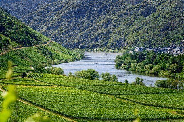 Turismo verde y sostenible para la recuperación del sector