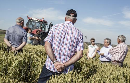 Es importante la implicación de los agricultores locales que forman parte del Compromiso Harmony.