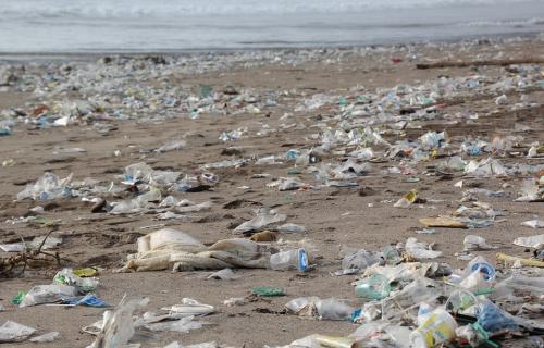 Basura en la playa en forma de botellas de plástico