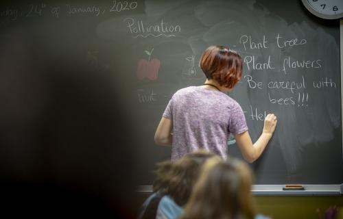 Formación online gratuita para  profesores de Primaria con el Proyecto Naturaliza de Ecoembes.