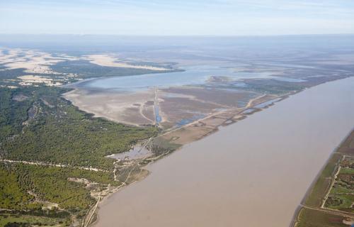 Estuario del Guadalquivir.