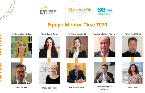 Los participantes en esta edición de Mentor DIRSE.