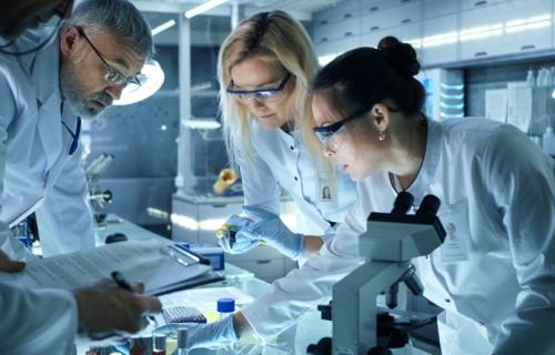 Más de la mitad del empleo en el sector es femenino.