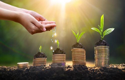 Bankinter refuerza su compromiso con la sostenibilidad en todos sus ámbitos de actividad.
