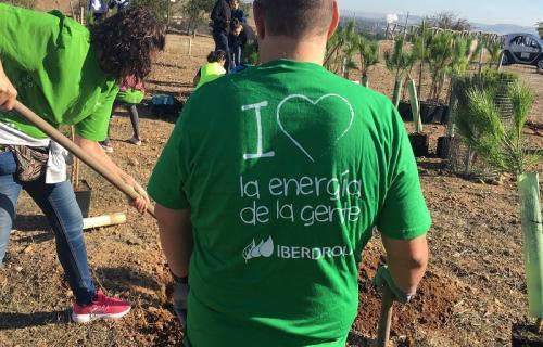 Acción de voluntariado corporativo de Iberdrola.