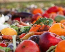 El objetivo del Gobierno con esta Ley es reducir a la mitad el desperdicio de alimentos per cápita