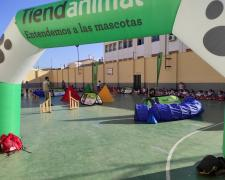 El Colegio Sagrado Corazón de Jesús, en Jaén, disfrutando de las jornadas Tiendanimal Educa