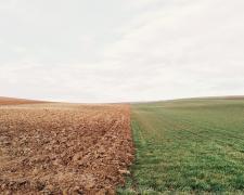 P&G acelera su acción sobre el cambio climático para 2040